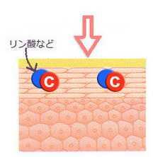 ビタミンC誘導体 化粧水 浸透